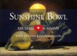 <b>Sunshine Bowl</b><h5>Short Video Demo</h5>