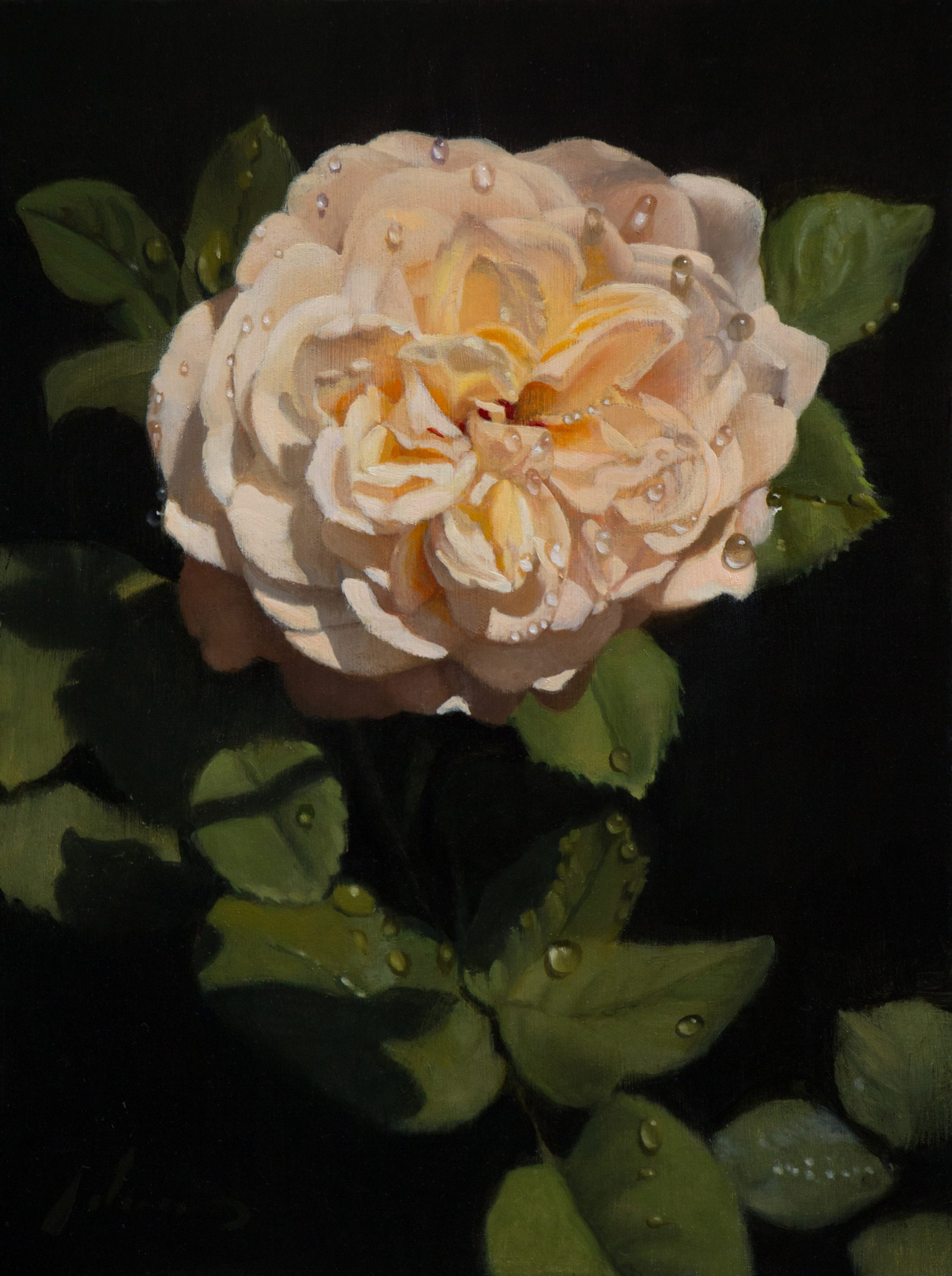White Rose: Step-by-Step Painting How To